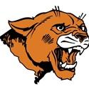 Lee Academy High School - Boys Varsity Football