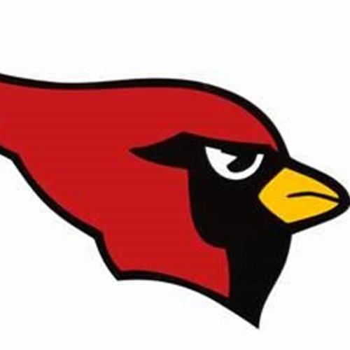 Collinsville High School - Freshman Cardinals