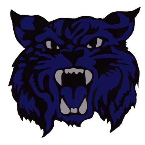 Fairfield Wildcats Football - Fairfield 5th Grade Black