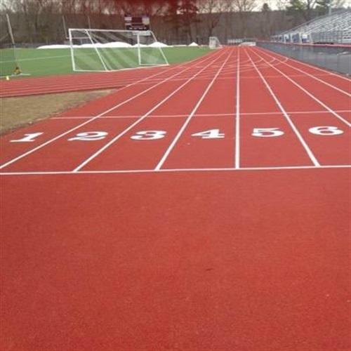 Delaware Valley High School - DV Varsity Track & Field