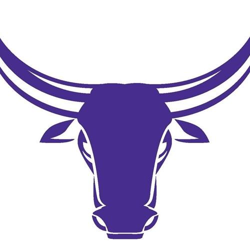 Morton Ranch High school - Boys Varsity Soccer