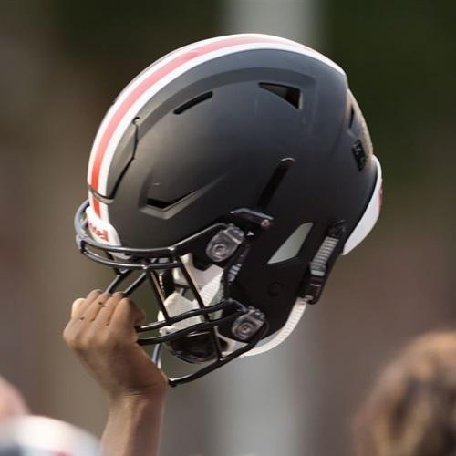 Wellesley High School - Freshman