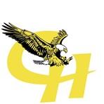 Homer High School - Homer Varsity Ice Hockey