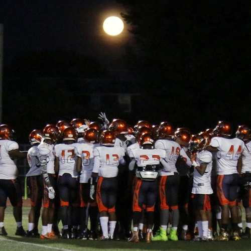 Delaware Valley Charter High School - Warriors