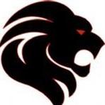 Monroe Lions - SYFC - 8th Grade 2016