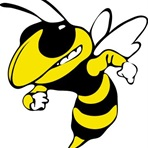 Woodford County C&Y - Yellow Jackets