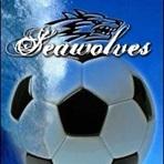 Southern Maine CC - Men's Varsity Soccer
