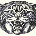 Star-Spencer High School - Boys Varsity Football