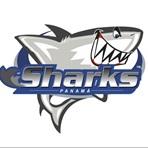 Sharks - Sharks