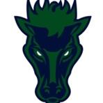 Damonte Ranch High School - Boys Varsity Football