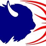 Fort LeBoeuf High School - Boys' Varsity Basketball
