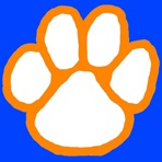 Campbell County High School - Boys' Varsity Basketball