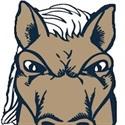 Walnut High School - Walnut JV Football