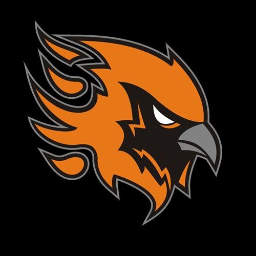 Tamworth Phoenix  - Adult Team