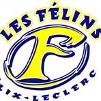 E.S. Félix-Leclerc - Women's Basketball