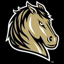 Southwest Minnesota State University - Womens Varsity Volleyball