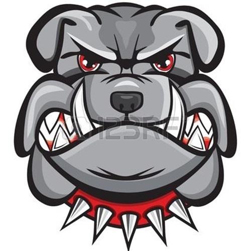Hewlett High School - Boys Varsity Football