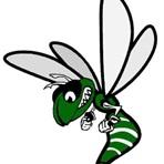 Williamston High School - Boys' Freshman Basketball