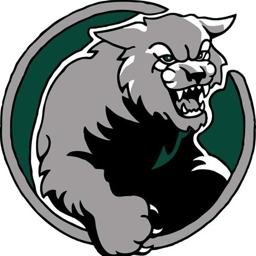 DeSoto High School - De Soto Lady Wildcats