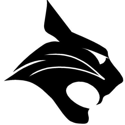 Bluffton High School - Men's Basketball Program