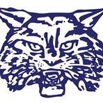 Wilmington High School - Wilmington Freshman Football