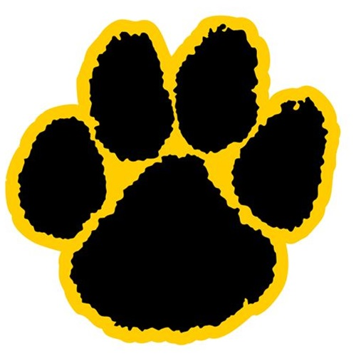 Chattahoochee County High School - Boys Varsity Football