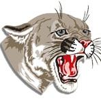 Van Wert High School - Van Wert Varsity Football
