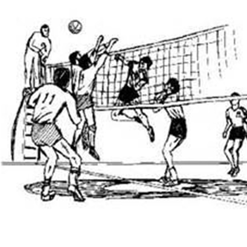 Marist High School - Marist Varsity Volleyball