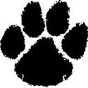 Fort Hamilton High School - Boys Varsity Football