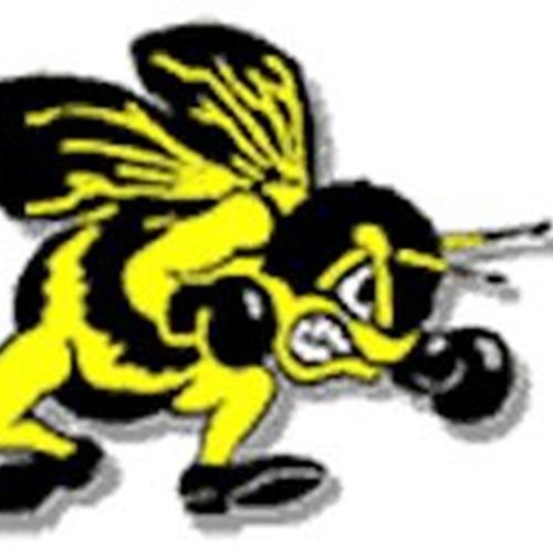 Perrysburg High School - Perrysburg Varsity Football