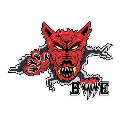 BIG LEAGUE FOOTBALL ASSOCIATION - 8th Grade BME