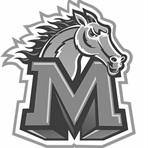Monticello High School - Girls Varsity Volleyball