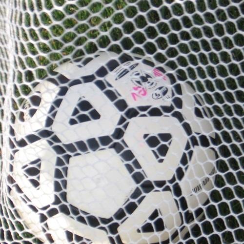Jackson Liberty High School - Liberty Girl's Soccer