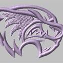 Skyview High School - Varsity Football