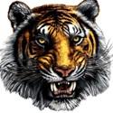 Dunnellon High School - Boys' JV Football