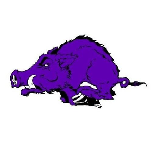 Walhalla High School - JV Football
