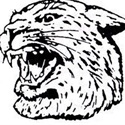 Johnson City High School - Boys Varsity Basketball