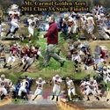 Mt. Carmel High School - Mt. Carmel Football