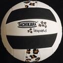 Morgan High School - Volleyball