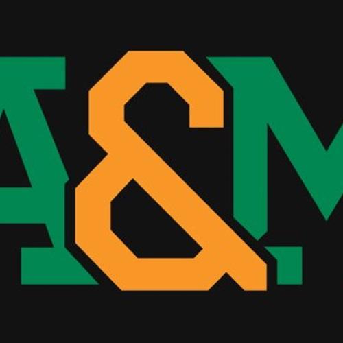 FAMU DRS - Boys Varsity Football