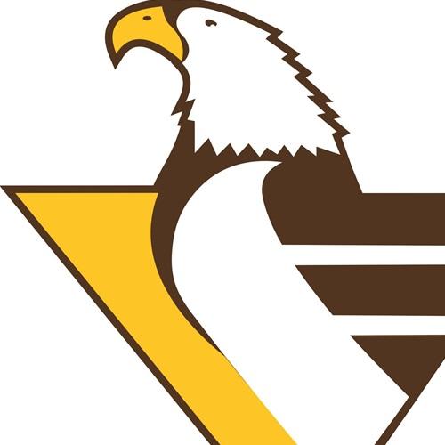 Apple Valley High School - Varsity Boys' Hockey