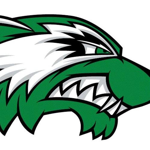 Texico High School - Boys Varsity Basketball