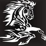 South Fork/Edinburg/Morrisonville High School - Boys Varsity Football