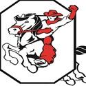 Orrville High School - Junk 1