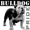 Hampton High School - Boys Varsity Football