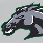 Evergreen Park High School - Boys Varsity Football