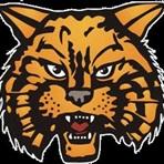 Byram Hills High School - Byram Hills Varsity Football
