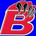 Bloomingdale Bears - BGYFL - Senior Gold - Bloomingdale Bears 2016