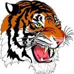 Benton Harbor High School - Varsity Football