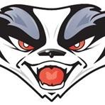 Arlington High School - Arlington/Lake Preston Varsity Football